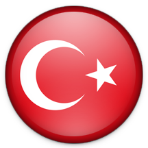 PuriFry Turkey